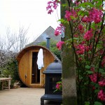 Beechenhill Sauna